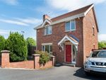 Thumbnail to rent in Belvedere Manor, Lurgan, Craigavon, County Armagh