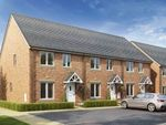 Thumbnail to rent in Gardenia Place, Exeter