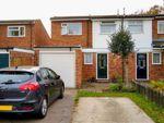 Thumbnail to rent in Dell Meadow, Hemel Hempstead