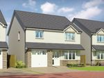 Thumbnail to rent in Oaktree Gardens, Alloa Park, Alloa