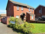 Thumbnail to rent in Sturcombe Avenue, Paignton