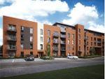 Thumbnail to rent in Arcadia, John Thornycroft Road, Southampton