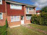 Thumbnail for sale in Brighton Hill, Basingstoke, Hampshire