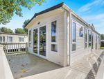 Thumbnail to rent in Kingsfishers Meadow, Northampton, Northamptonshire, Northants