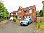 Thumbnail for sale in Crestlands, Alresford, Essex
