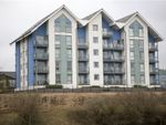 Thumbnail to rent in Phoebe Road, Copper Quarter, Pentrechwyth, Swansea, West Glamorgan