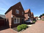 Thumbnail to rent in Cecily Avenue, Braintree