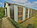Thumbnail for sale in Kennels, Cattery & Equestrian Businesses PO38, Sandford, Isle Of Wight