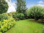 Thumbnail for sale in Chiswell Green Lane, Chiswell Green, St. Albans