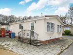 Thumbnail to rent in Oaklands, Hook Common, Hook