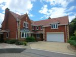 Thumbnail for sale in Crabtree Way, Old Basing, Basingstoke
