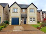 Thumbnail to rent in Juniper Drive, Stainburn, Workington
