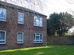 Thumbnail to rent in Molewood Close, Cambridge, Cambridgeshire