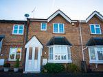 Thumbnail to rent in Primrose Drive, Hertford