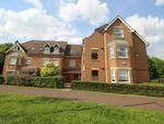 Thumbnail to rent in Portishead Drive, Tattenhoe, Milton Keynes
