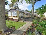 Thumbnail for sale in Beech Avenue, Deanland Wood Park, Golden Cross, Hailsham