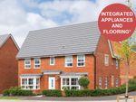 """Thumbnail to rent in """"Alnwick"""" at Weddington Road, Nuneaton"""
