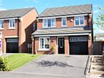 Thumbnail for sale in Buttercup Grove, Middlesbrough