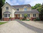 Thumbnail for sale in Grange Close, Everton, Lymington