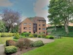 Thumbnail to rent in Gilman Road, Norwich, Norfolk