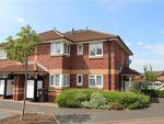 Thumbnail to rent in Glenview Court, Preston