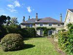 Thumbnail for sale in Holmhurst St Marys, St Leonards-On-Sea, East Sussex