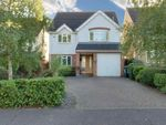 Thumbnail to rent in Rectory Avenue, Ashingdon, Rochford