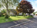 Thumbnail to rent in Walnut Close, Rode, Somerset