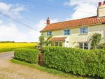 Thumbnail for sale in North Green Road, Pulham St. Mary, Diss