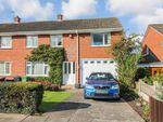 Thumbnail to rent in Palmer Road, Carlisle