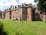 Thumbnail for sale in 16 Ravens Court, Benningfield Gardens, Berkhamsted, Hertfordshire