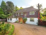 Thumbnail to rent in Blackdown Avenue, Pyrford, Surrey