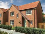 Thumbnail to rent in Winding Way, Darlington, County Durham