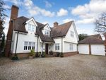 Thumbnail for sale in Mill Lane, Old Harlow, Harlow