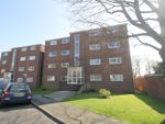 Thumbnail to rent in Copper Beech Drive, Farlington, Portsmouth