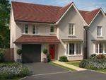 "Thumbnail to rent in ""Heathfield"" at Windsor Avenue, Newton Abbot"