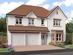 "Thumbnail to rent in ""Buttermere"" at Dirleton, North Berwick"