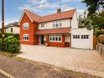 Thumbnail for sale in Fernlea Road, Burnham-On-Crouch