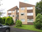 Thumbnail for sale in Cypress Avenue, Norton, Sheffield