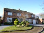 Thumbnail for sale in Sutton Close, Broxbourne