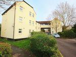 Thumbnail to rent in Westfield Road, Westbury-On-Trym, Bristol
