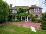 Thumbnail for sale in Little Common Road, Bexhill-On-Sea