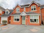 Thumbnail to rent in Westmead Crescent, Erdington, Birmingham
