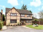 Thumbnail for sale in Comfrey Close, Farnborough, Hampshire