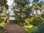 Thumbnail for sale in Pine Coombe, Croydon