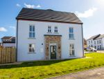 Thumbnail to rent in New Phase At The Hillocks, Altnagelvin, Londonderry