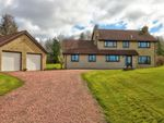 Thumbnail for sale in Eagle Drive, Berwick-Upon-Tweed
