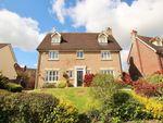 Thumbnail for sale in Queenborough Grove, Queenborough Lane, Great Notley, Braintree, Essex
