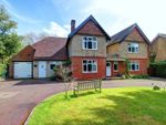 Thumbnail for sale in Danes Road, Awbridge, Romsey, Hampshire