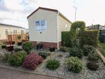Thumbnail to rent in Woodland View, Stratton Strawless, Norwich